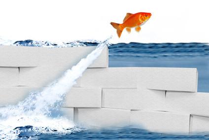 Angebote Karriere: Karriereberatung: Besser und erfolgreicher bewerben, bessere und erfolgreichere Vorstellungsgespräche, besser und erfolgreicher im Job, Karriere Coaching für Ihren Erfolg