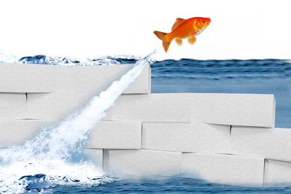 Zielerreichungs-Management: Nicht nur Beratung, sondern auch Umsetzung Ihrer Ziele ist die Devise. Wir engagieren uns tatkräftig für Ihre persönliche, berufliche oder geschäftliche Zukunft! Nennen Sie uns Ihr Ziel - wir setzen es um!