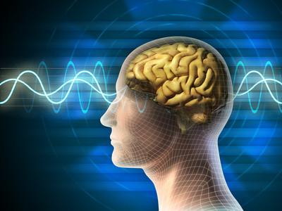 Hintergrundwissen Psychologie und Neurowissenschaften