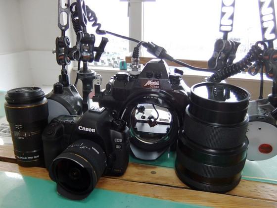水中写真の基本 カメラ機材のメンテナンス