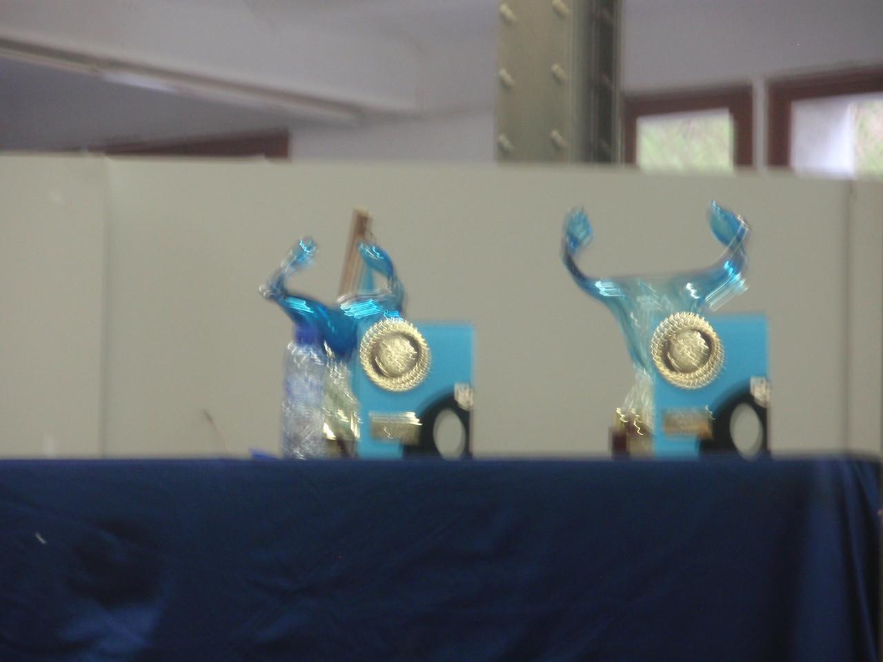 Los trofeos para los Campeones