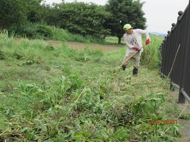 草刈中(上合橋右岸側の小公園)