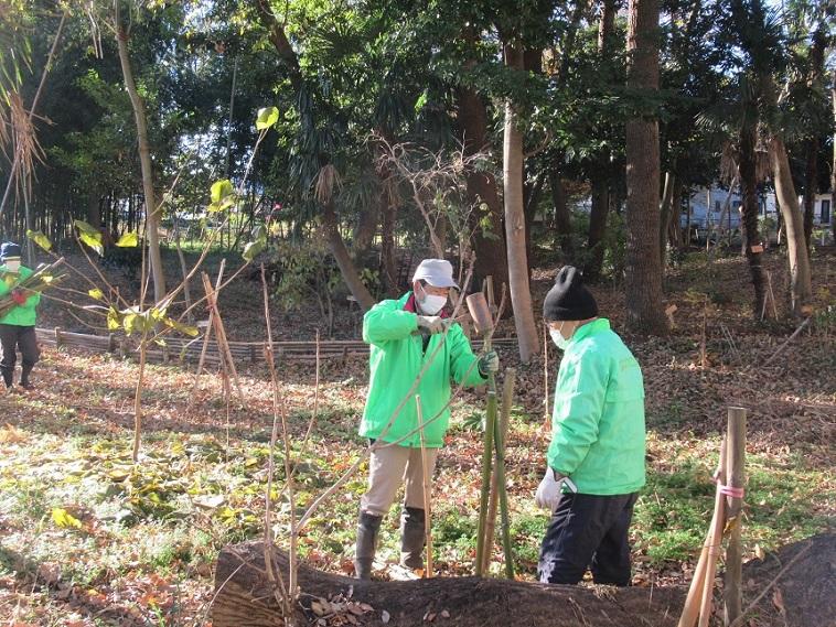 植栽の囲い作り