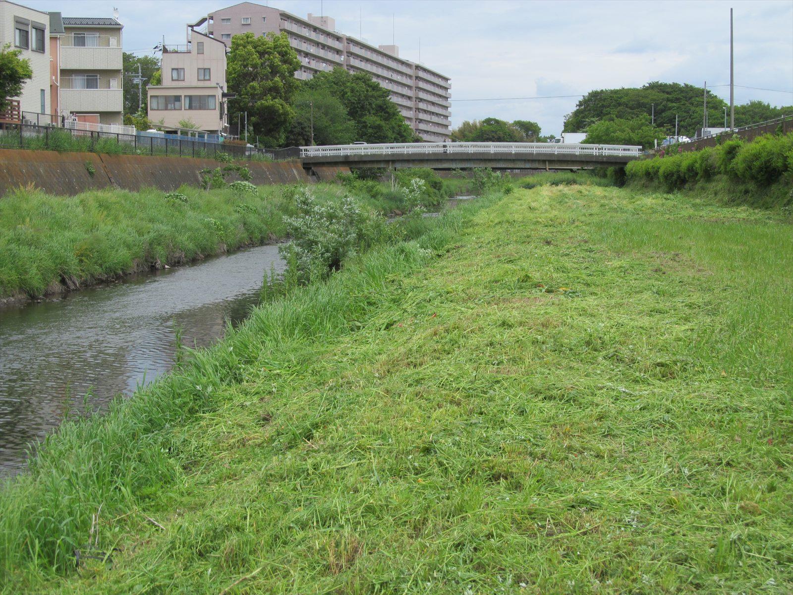 草刈後(2区間)