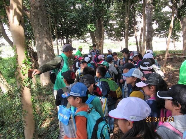 2組自然観察の森