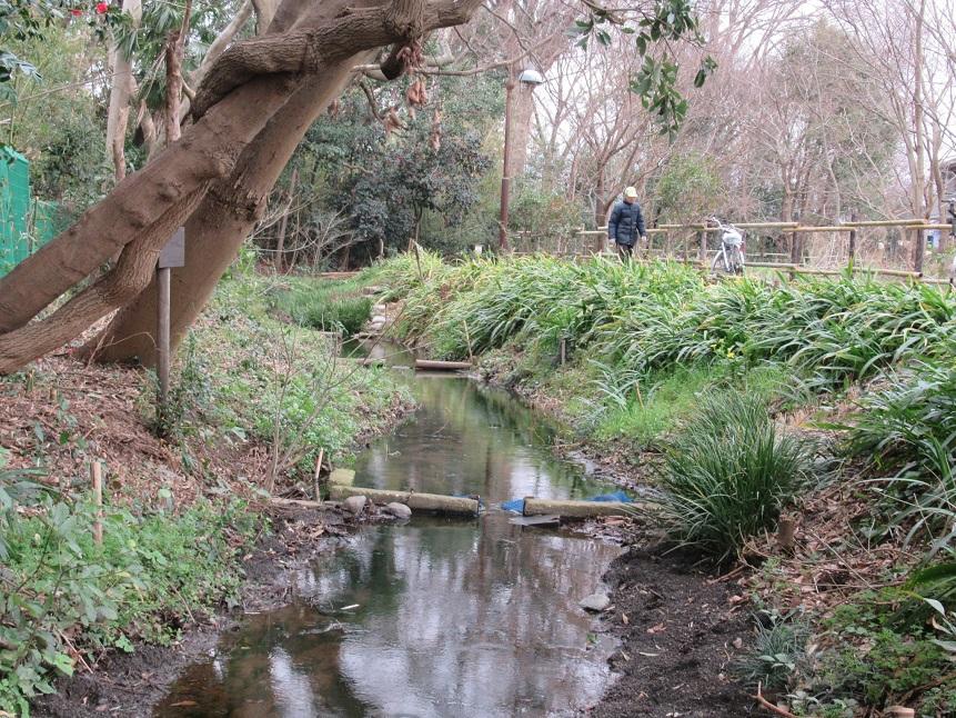 放流前の水路