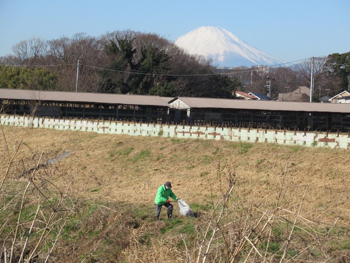 富士山が見てくれてます