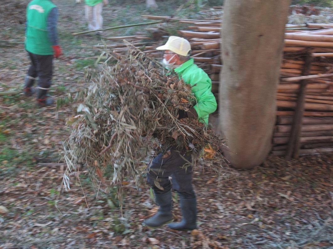 伐採した竹の回収