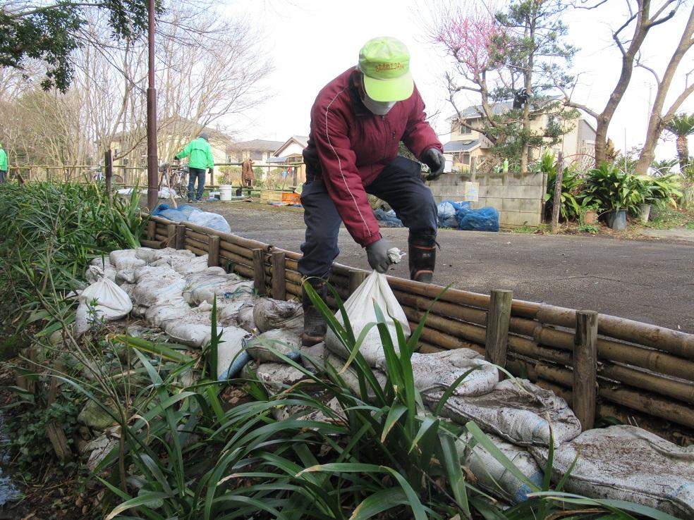 作業中 土嚢による土手の補強