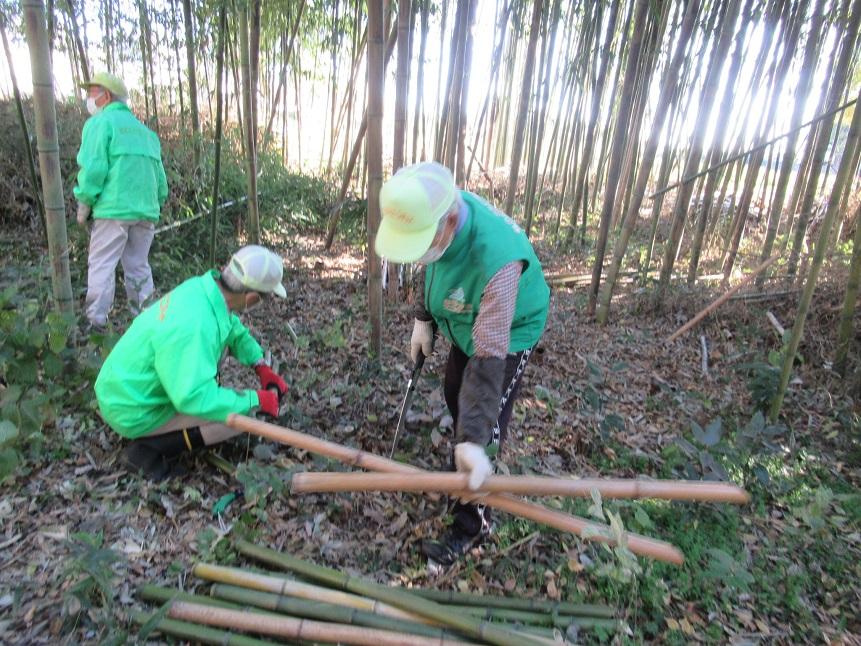 ベンチ用竹の用意