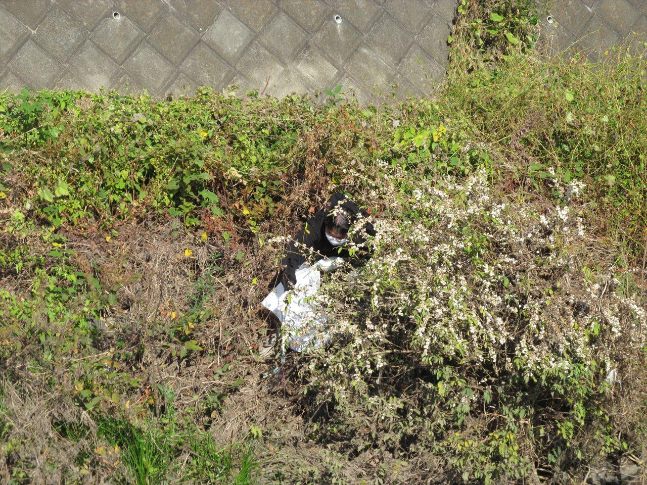 ゴミ拾い中_川に落ちそう!