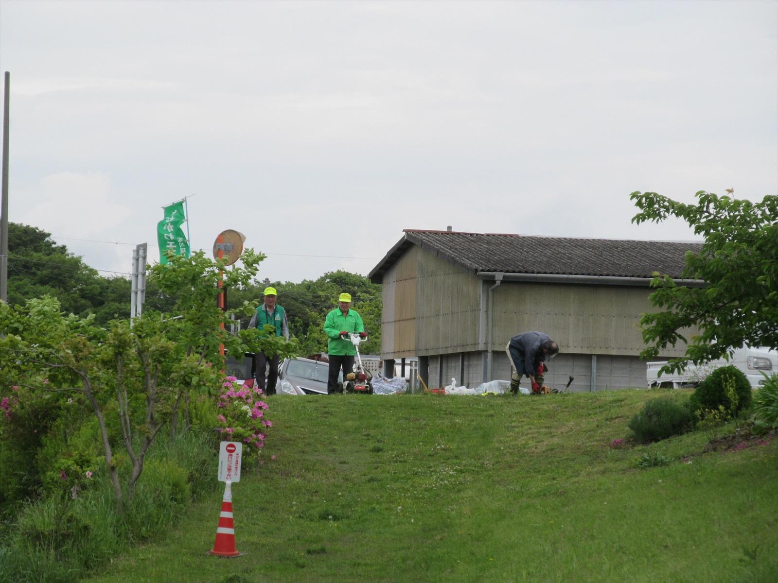 自動草刈り機スタート