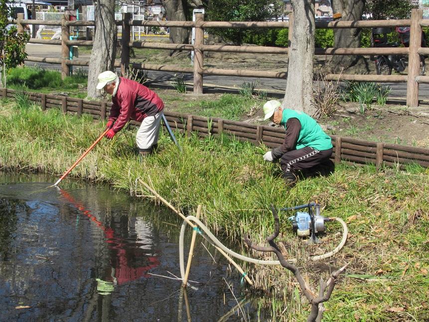 3月25日_周囲の草刈り