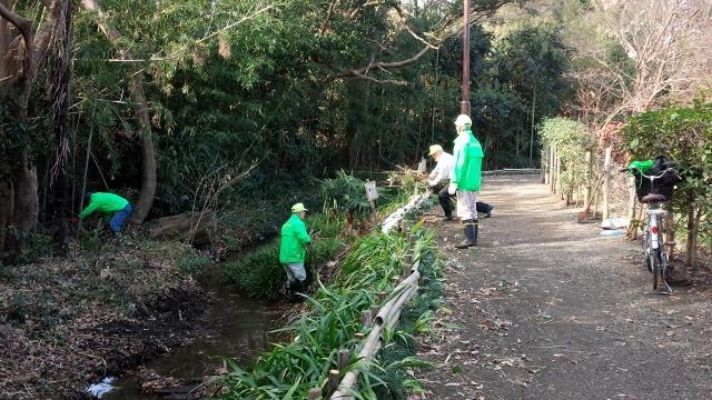 竹の枝の片付け