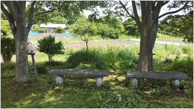右岸小公園