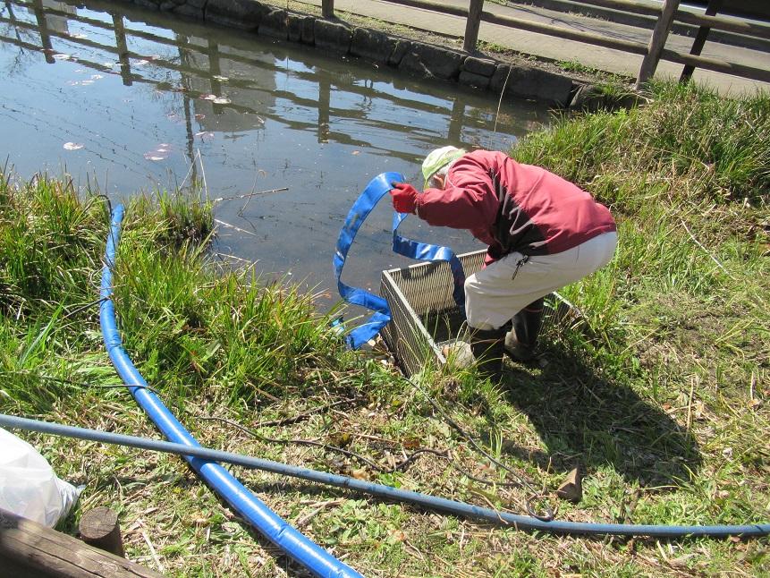 3月25日_排水溝のゴミ取り