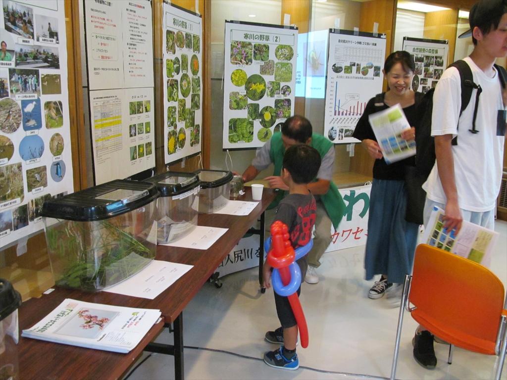 昆虫展示の全景
