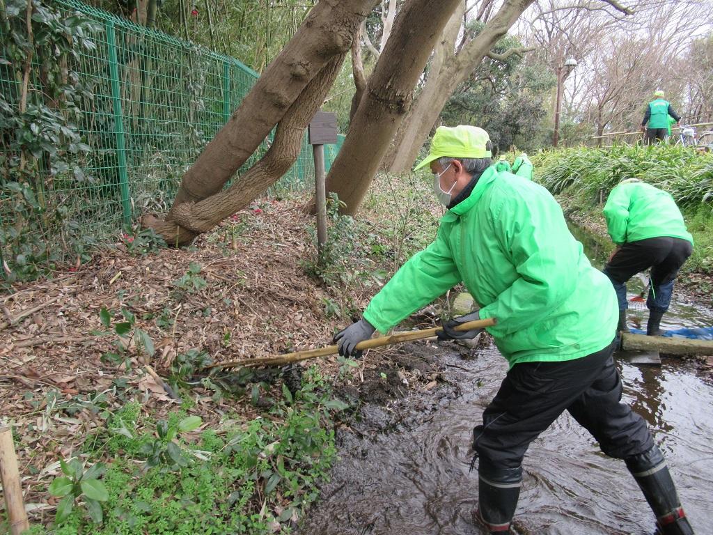 藻の除去作業