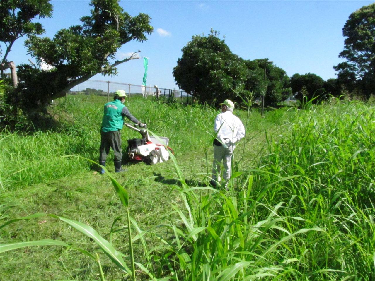 自走式草刈り機講習