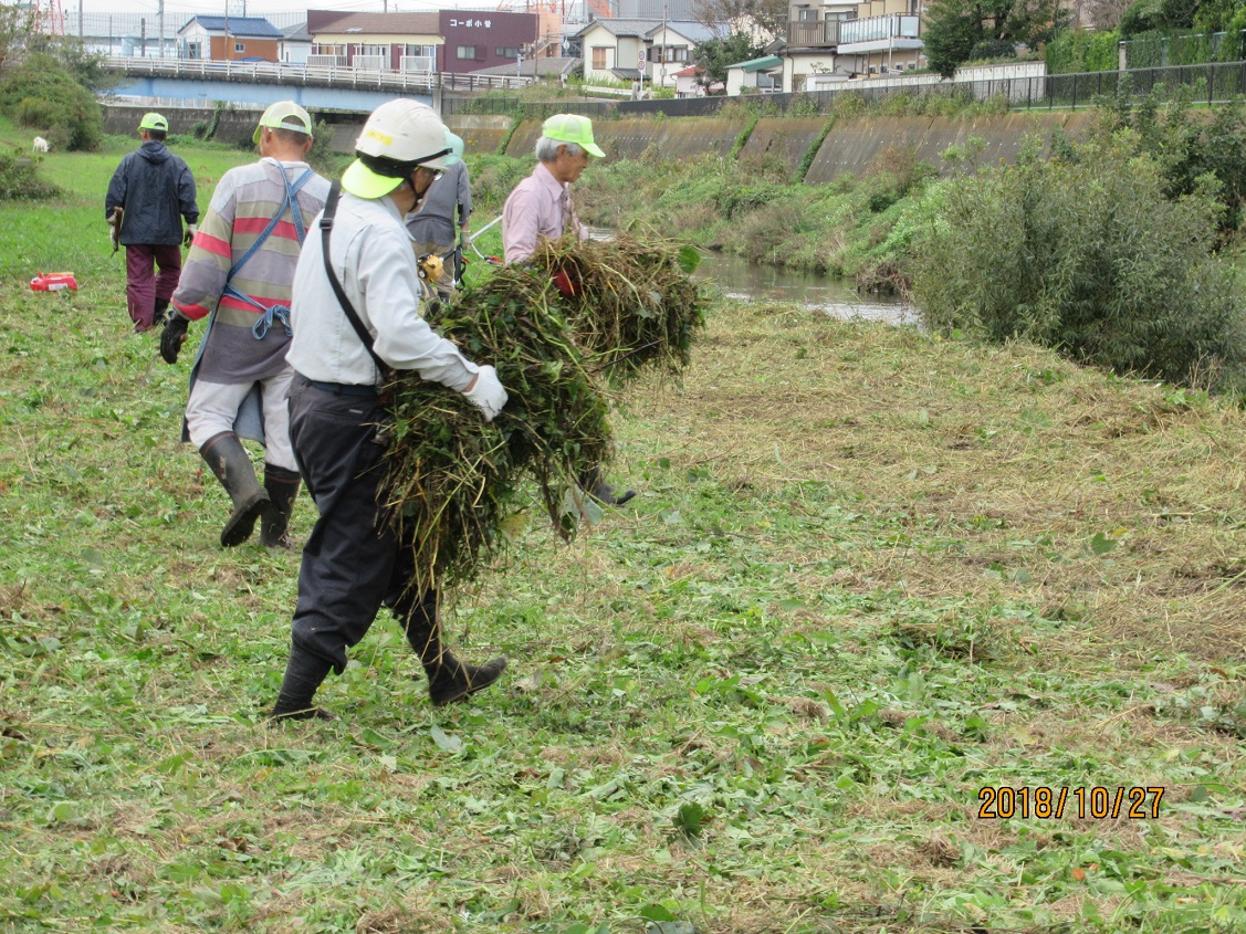 作業中_刈った草の整理