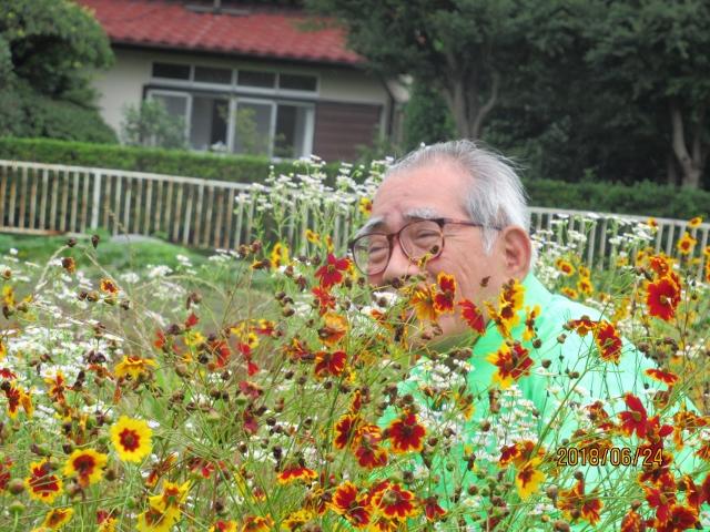 おじいちゃんと花畑(2)