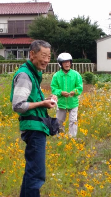 小出川昇天橋下流右岸の花畑にて。おじいちゃんと花畑(1)