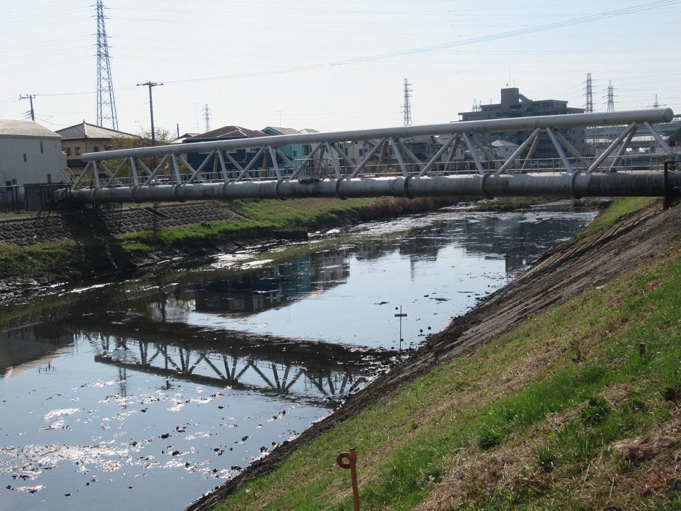 弁天橋付近から下流を見たところ