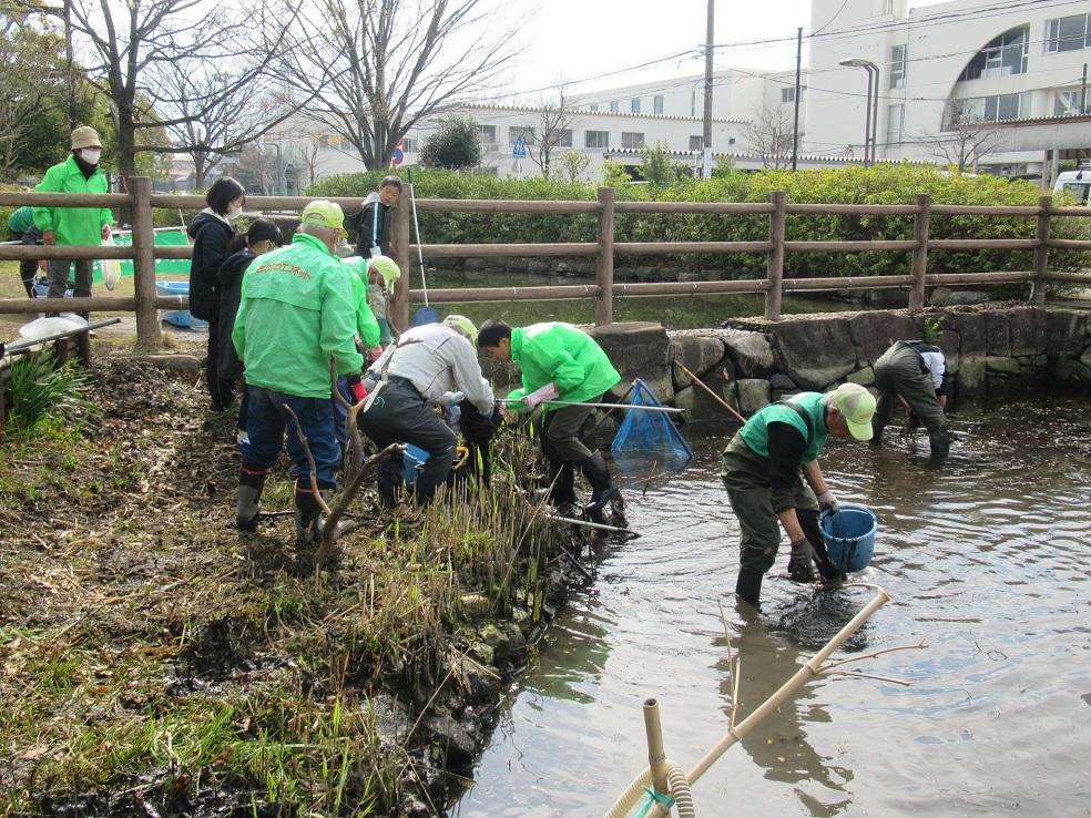 3月27日_ハゴロモ藻の除去