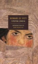 Beware of Pity by Stefan Zweig, Pushkin Press