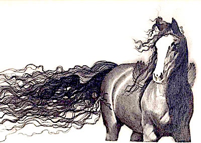 Drawing of a Horse/ sold