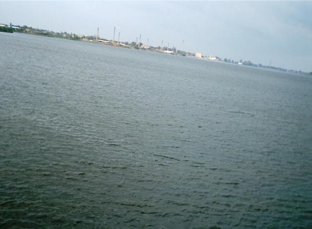 """نهر النيل عند """"دسوق"""" بمحافظة كفر الشيخ بدلتا مصر  عادل غنيم 2004"""