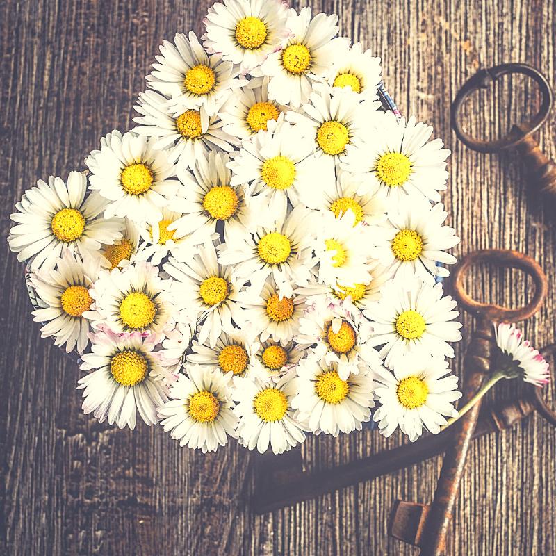 8 Zeichen, dass ihr euch auseinandergelebt habt und 12 Wege wieder zueinander zu finden