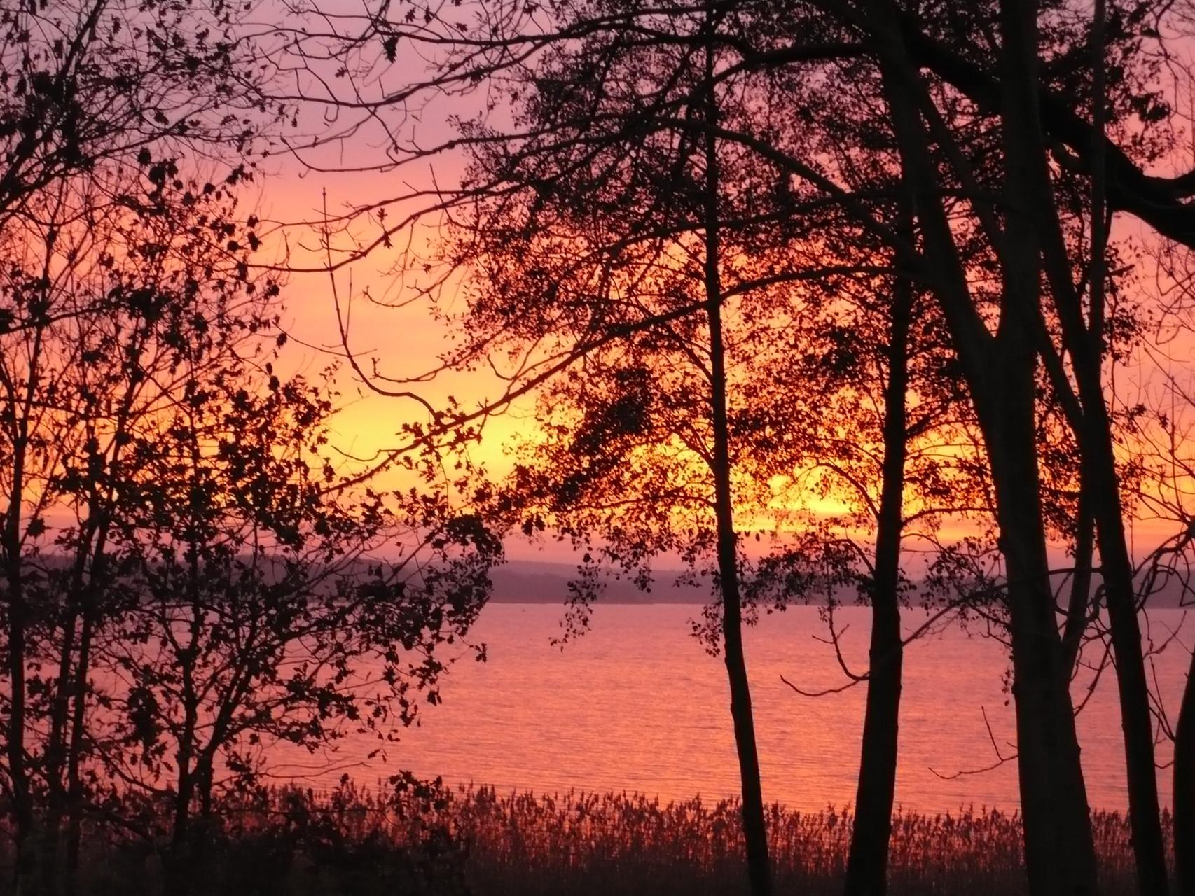 Sonnenaufgang über dem Großen Labussee