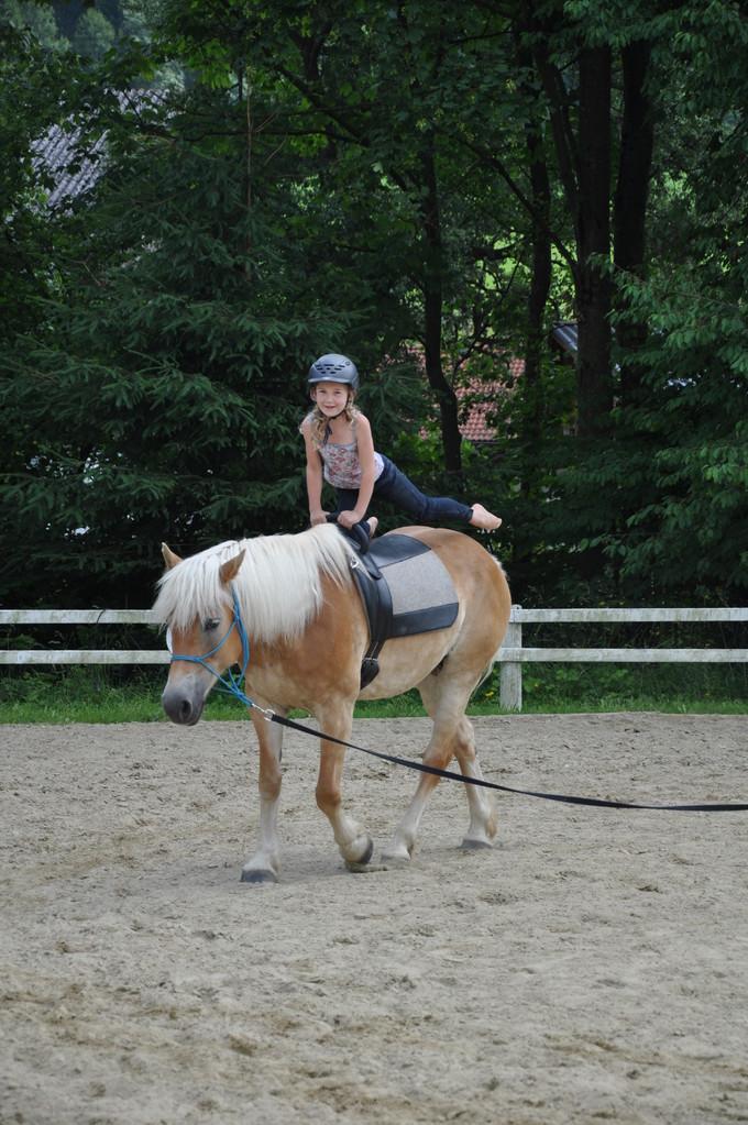 Evita unser braves Voltigierpferd