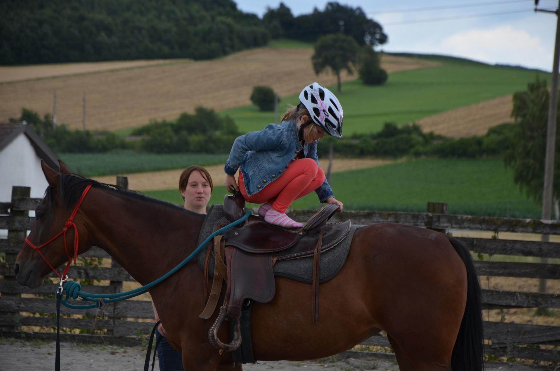 Turnen am Pferd!