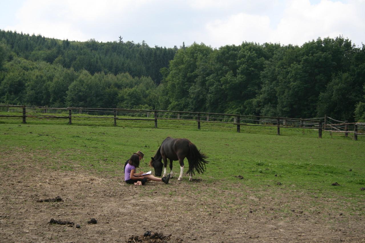 mit Seppl auf der Weide
