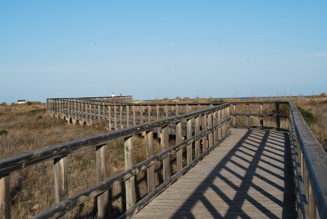 Senda Camino a la Playa de la Torre Derribada