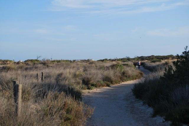 Senda por el Parque Regional de las Salinas de San Pedro del Pinatar