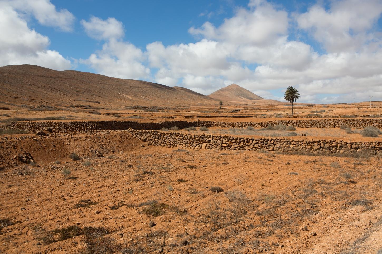 Landschaft zwischen La Caldereta und La Oliva