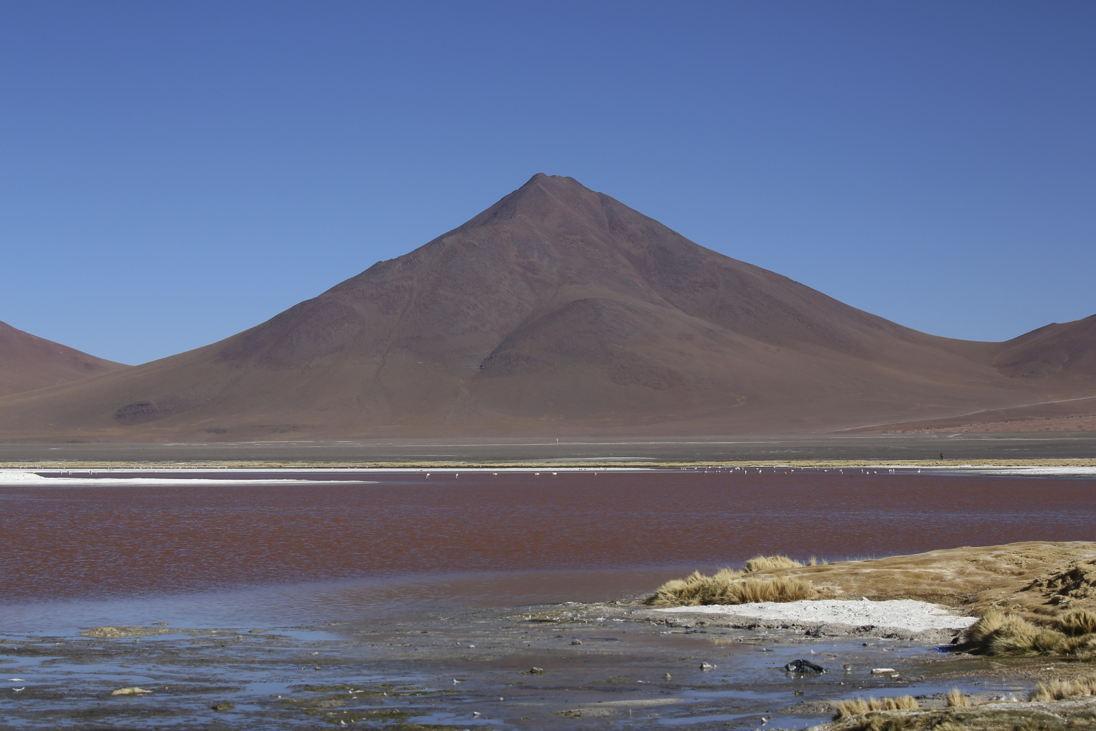 Nationalpark Evora -  Laguna Colorada