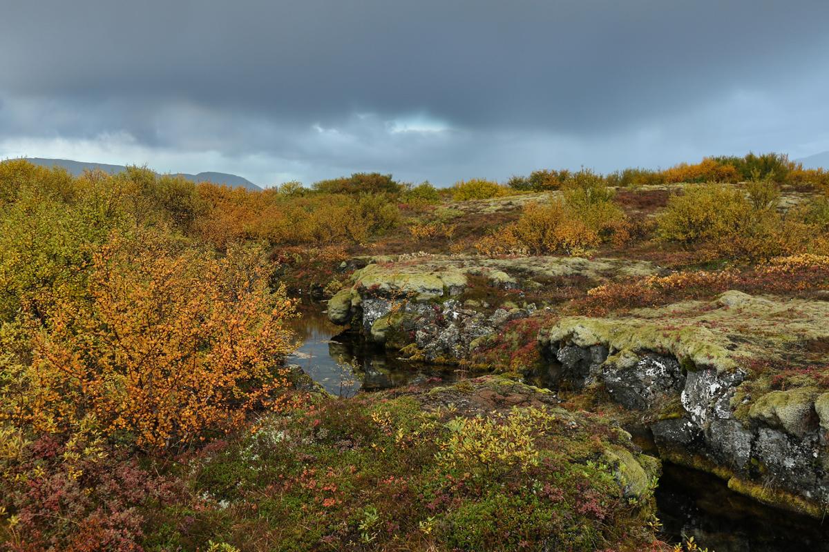 Halbinsel Snaefellsnes - Eldborgkrater
