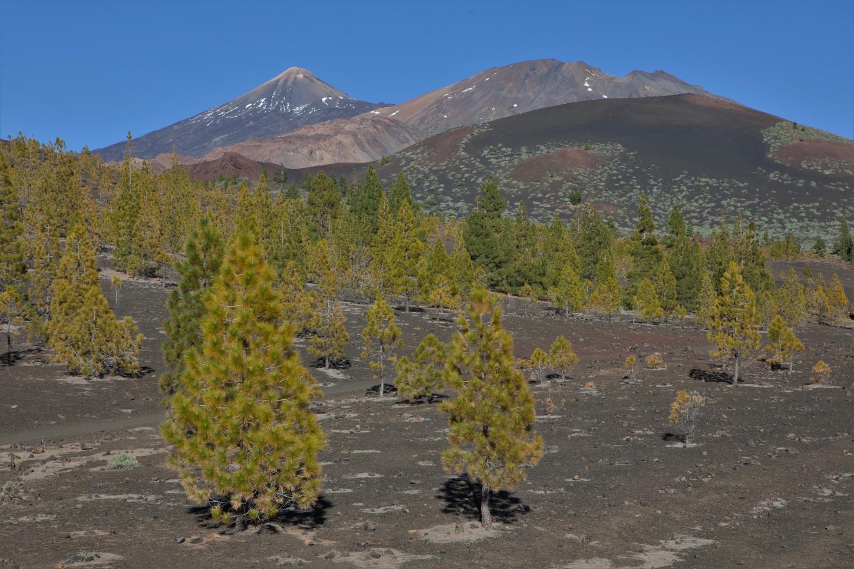 Parque Natural Corona Forestal