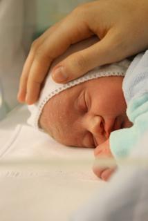 Luisa, 6 Stunden alt unter der schützenden Hand von Sophia