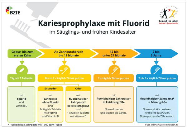 Grafik-Quelle: www.zm-online.de/archiv/2021/09/zahnmedizin/einigung-auf-fluoridempfehlungen-fuer-kleinkinder/