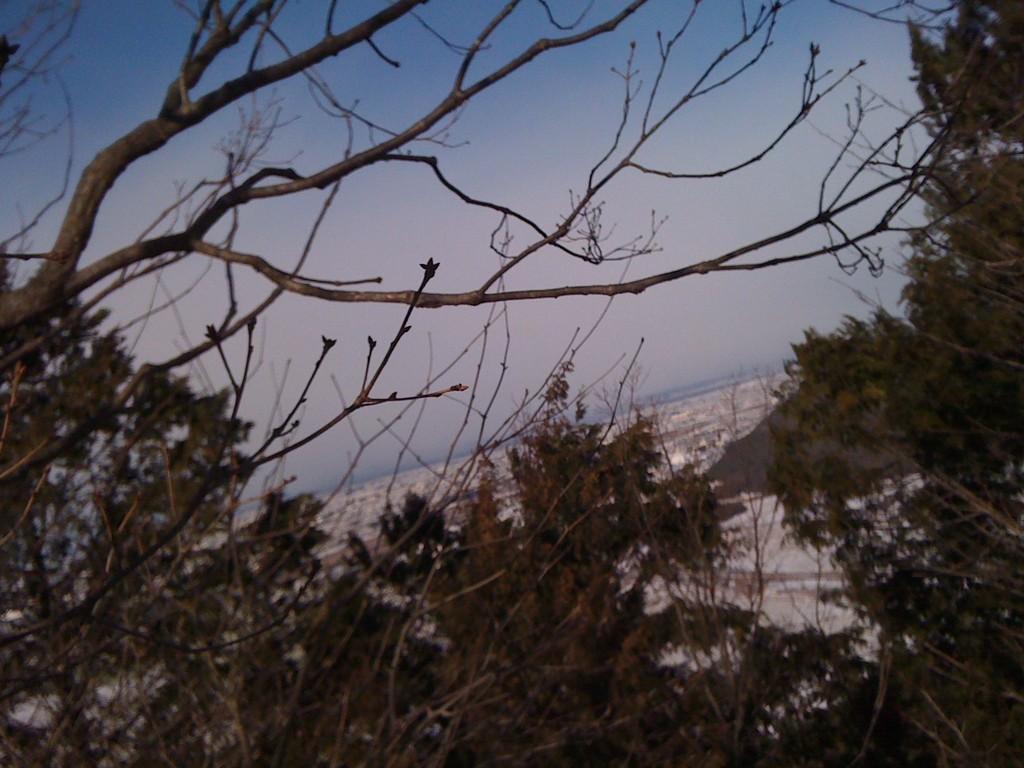 遠く琵琶湖ものぞめる絶景。