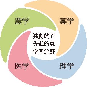 独創的で先進的な学問分野