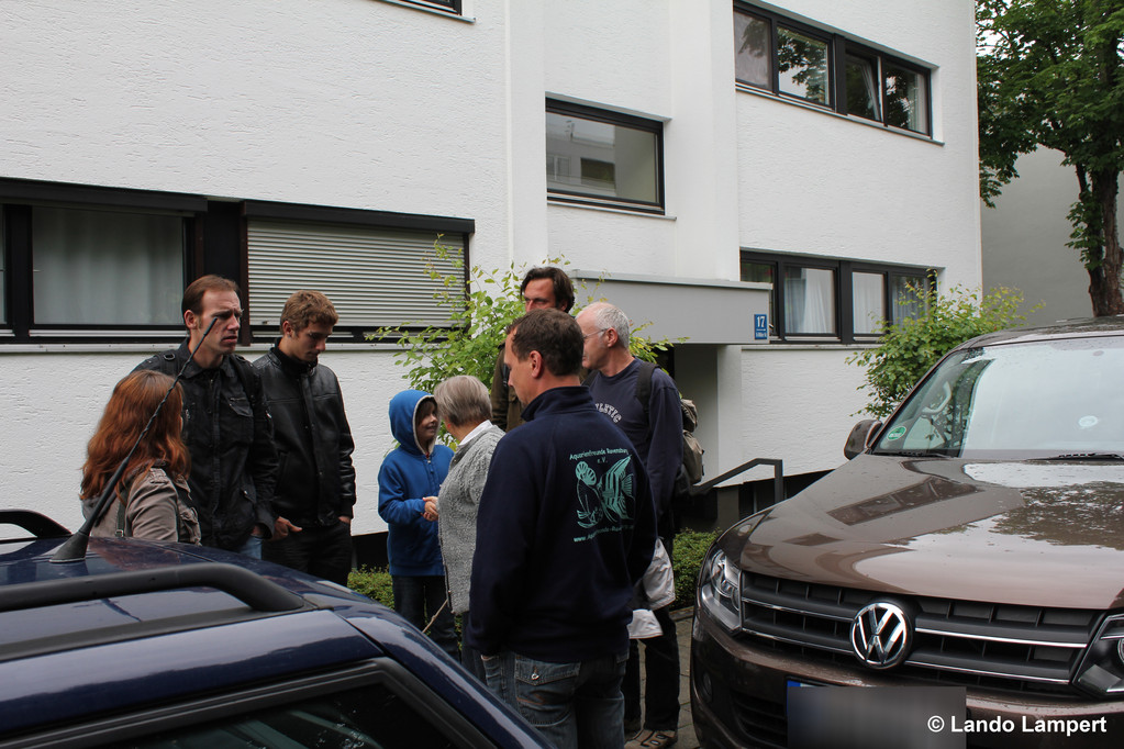 Sammeln in Obermenzing