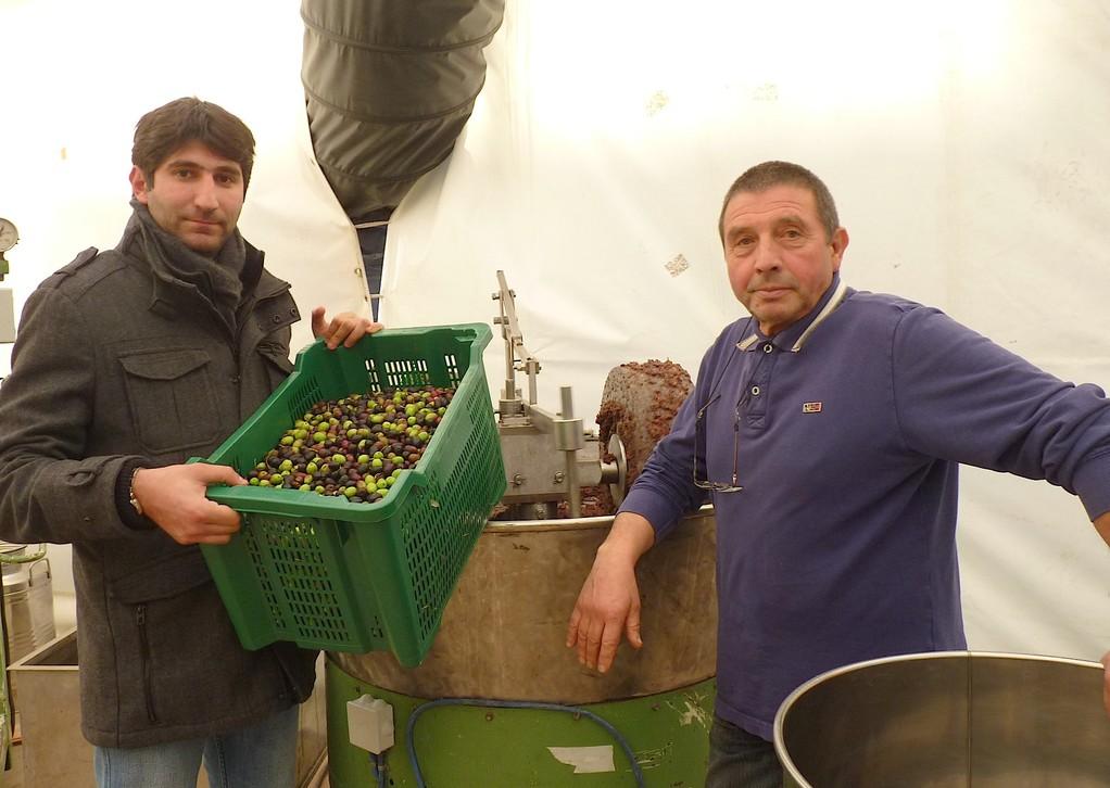 René Colombani ou l'art et la manière de produire l'huile d'olive sur place