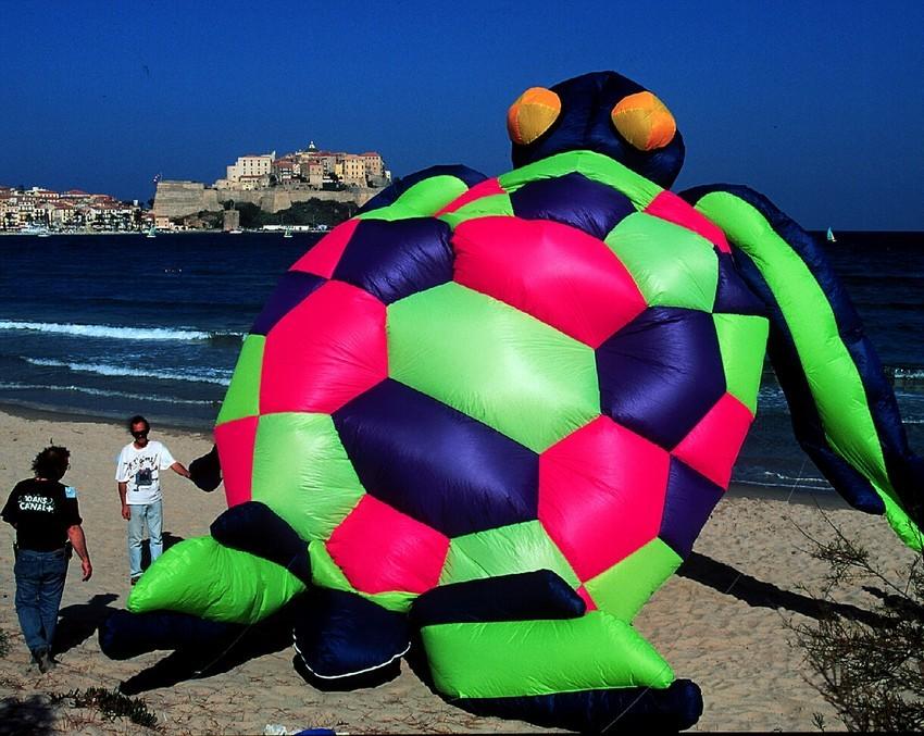 2000, la tortue qui vole