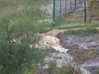 Un gentil petit cours d'eau transformé en torrent à Ortale de Biguglia